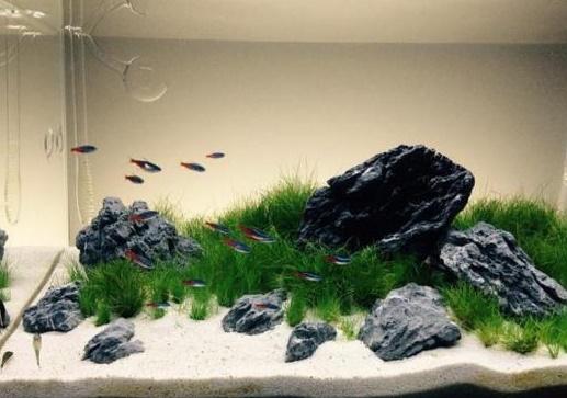 Переход на песок в аквариуме